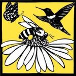 Bee a Pollinator